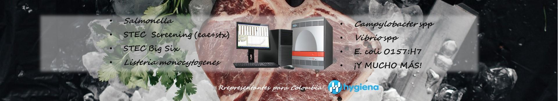 BAX DETECCIÓN DE PATÓGENOBAX DETECCIÓN DE PATÓGENOS POR PCRS POR PCR