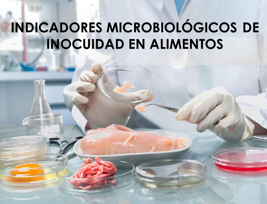 INDICADORES MICROBIOLÓGICOS DE INOCUIDAD EN ALIMENTOS